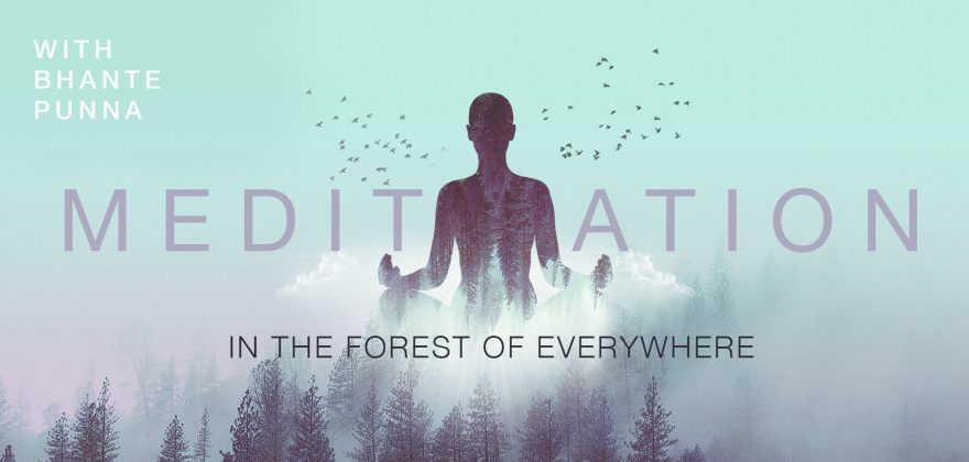 Meditation in the Forest with Bhante Punna